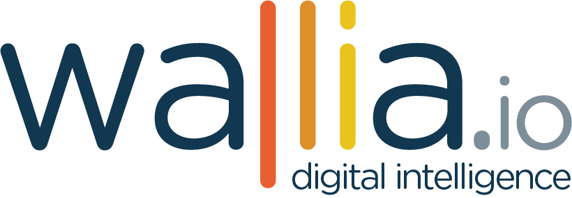 Wallia - Digital Intelligence